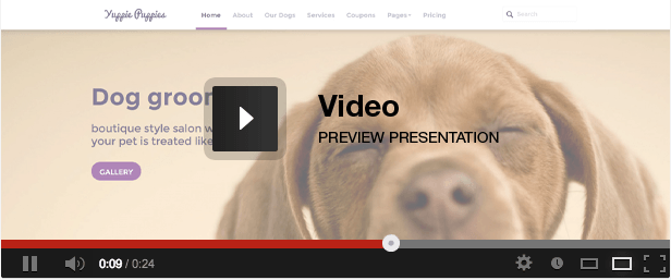 Petshop - Responsive Pet Friendly Theme video presentation